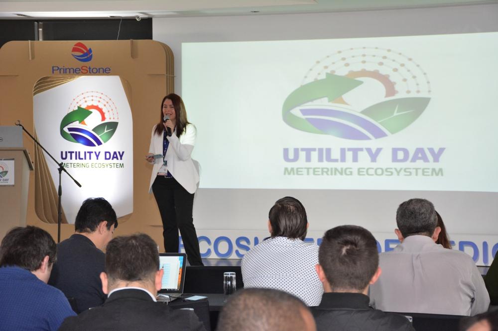 Utility Day