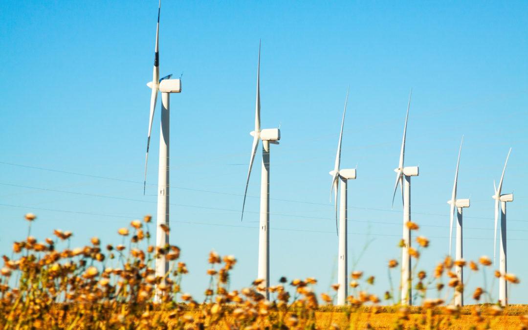 Iberdrola, las lecturas de los medidores de su segundo parque eólico se gestionan con soluciones PrimeStone